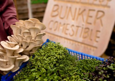 Bunker_comestible_4